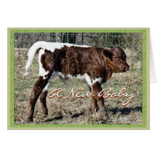 NewBaby-customize for any occasion Greeting Card