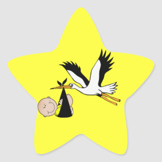 Newborn Baby and Stork Star Sticker