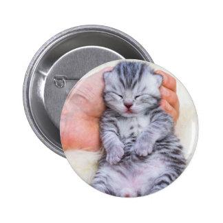Newborn cat lying sleepy in hand on fur 2 inch round button