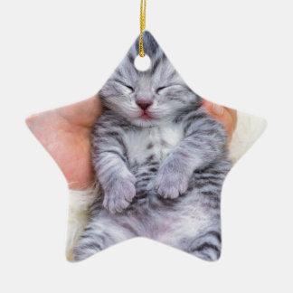 Newborn cat lying sleepy in hand on fur ceramic ornament