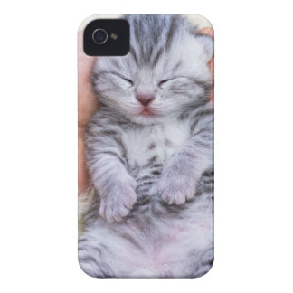 Newborn cat lying sleepy in hand on fur iPhone 4 covers