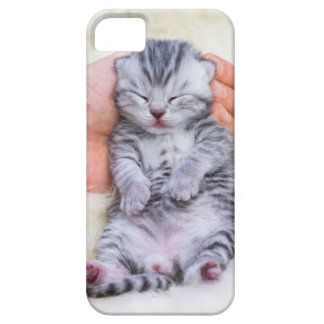 Newborn cat lying sleepy in hand on fur iPhone 5 covers