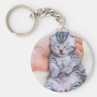 Newborn cat lying sleepy in hand on fur keychain