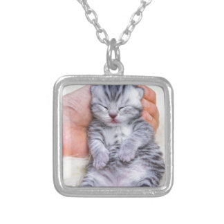 Newborn cat lying sleepy in hand on fur silver plated necklace