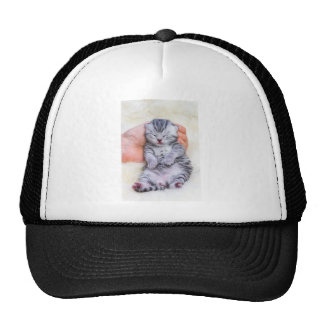 Newborn cat lying sleepy in hand on fur trucker hat