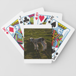 Newborn lamb bicycle playing cards