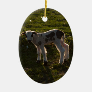 Newborn lamb ceramic ornament