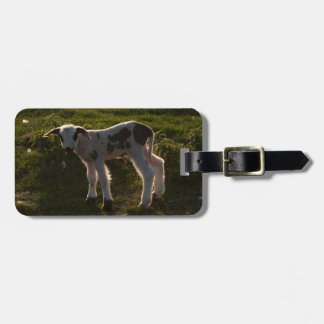 Newborn lamb luggage tag