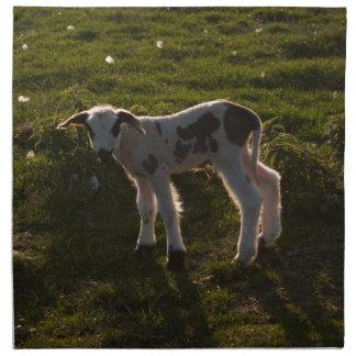 Newborn lamb napkin