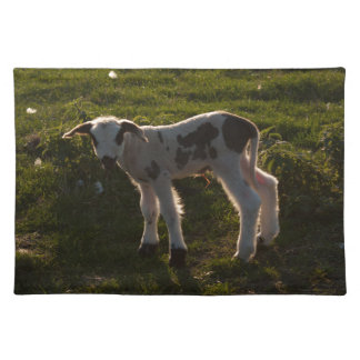 Newborn lamb placemats