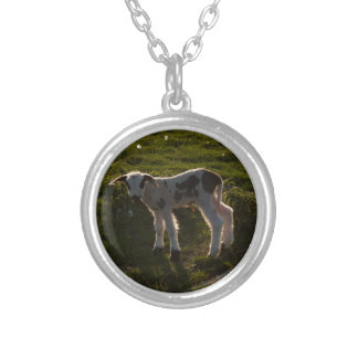 Newborn lamb silver plated necklace