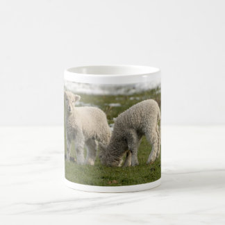 Newborn Lambs Coffee Mug