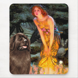 Newfie (brown) - MidEve Mouse Pad