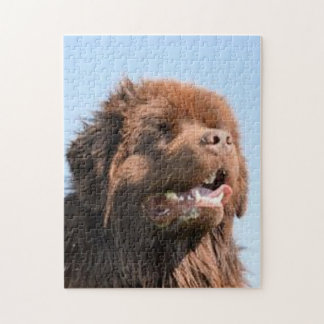 newfie brown.png jigsaw puzzle