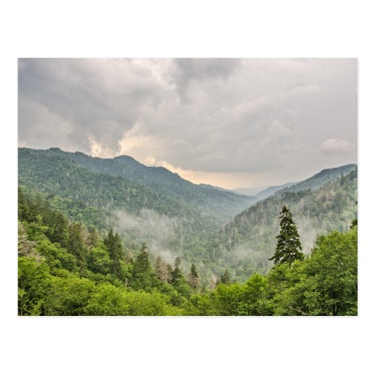 Newfound Gap, Great Smoky Mountains National Park Postcard