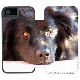 newfoundland-3 incipio watson™ iPhone 5 wallet case