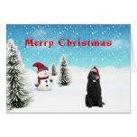 Newfoundland Christmas Card