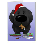 Newfoundland Christmas Cards
