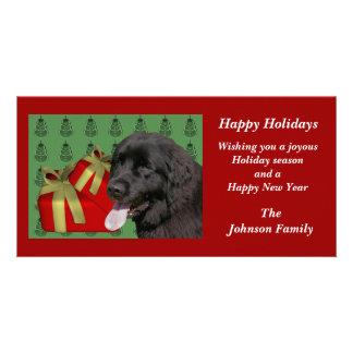 Newfoundland Dog Animal Christmas Holiday Card