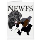 Newfoundland dog four colours card