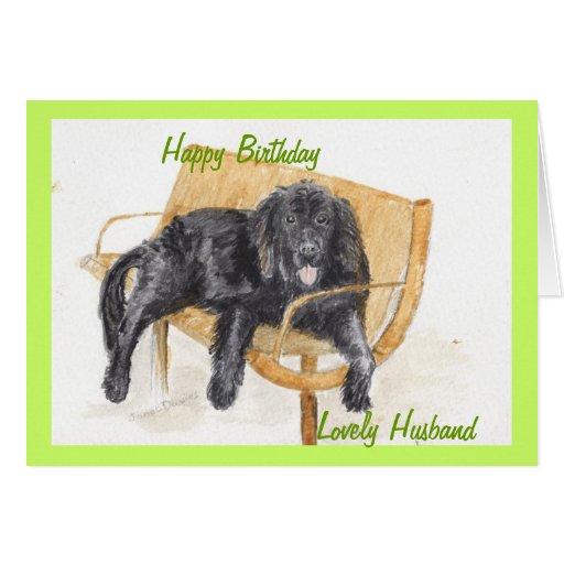 Newfoundland Dog Happy birthday husband. Greeting Cards