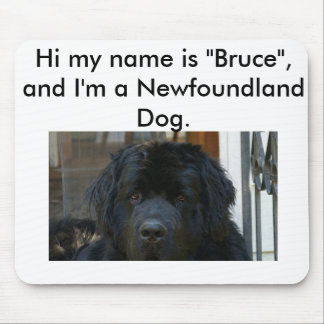Newfoundland Dog Mouse Pad