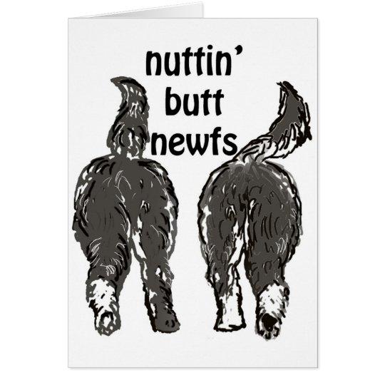 Newfoundland dogs card