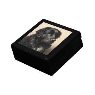 Newfoundland Gift Box