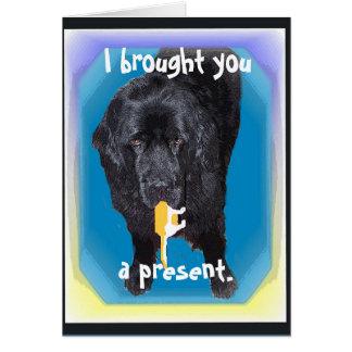 Newfoundland Greeting Gift Card