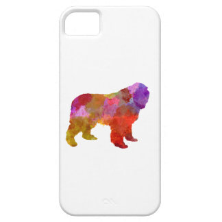 Newfoundland in watercolor iPhone 5 case
