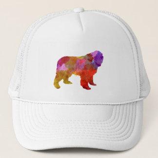 Newfoundland in watercolor trucker hat
