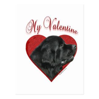 Newfoundland My Valentine Postcard