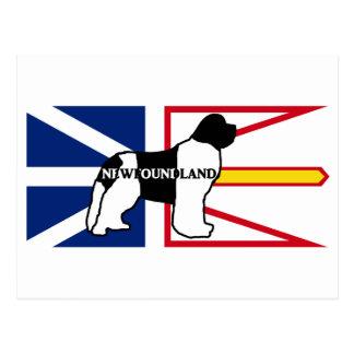 Newfoundland name silo on flag white and black postcard