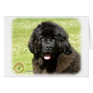 Newfoundland Puppy9T086D-104 Card