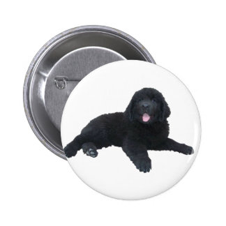Newfoundland Puppy 2 Inch Round Button
