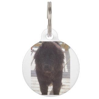 Newfoundland_puppy_muddy Pet ID Tag