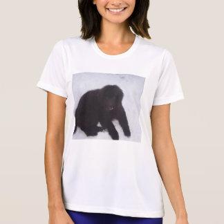 Newfoundland_puppy T-Shirt