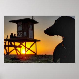 Newport Beach Sunset Poster