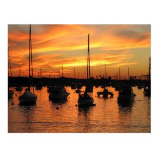 Newport Sunset Postcard