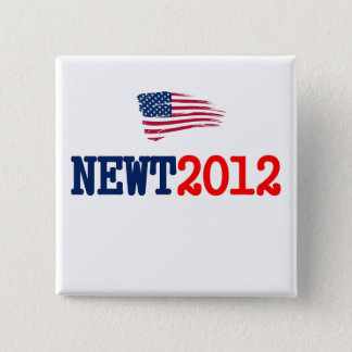 Newt 2012 RW&B 2 Inch Square Button