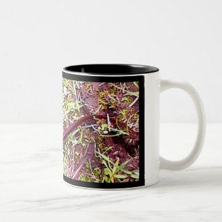 Newt Two-Tone Coffee Mug