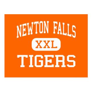 Newton Falls - Tigers - High - Newton Falls Ohio Postcard