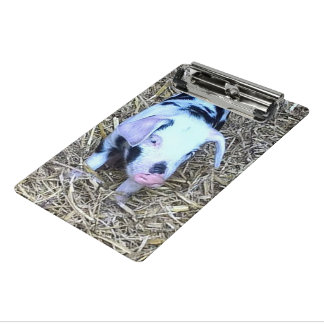 next cute piglet mini clipboard