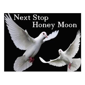 next, stop honey moon postcard