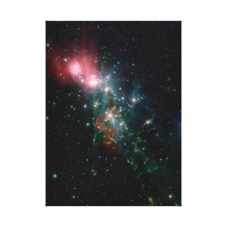 NGC 1333 Chaotic birth of stars Canvas Print