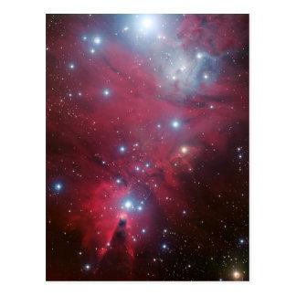 NGC 2264 and the Christmas Tree cluster Postcard