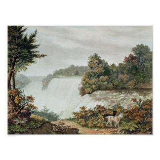 Niagara Falls, from Goat Island Poster