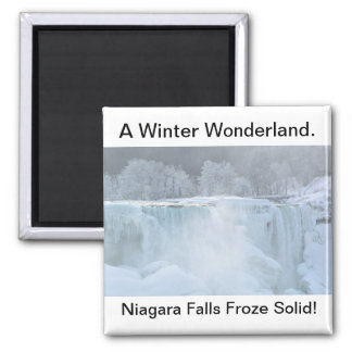 Niagara Falls Froze Solid Magnet