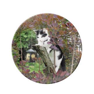 Nibbler in the Purple Smoke Tree Porcelain Plates
