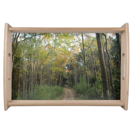 Nice Autumn Forest Path Serving Trays